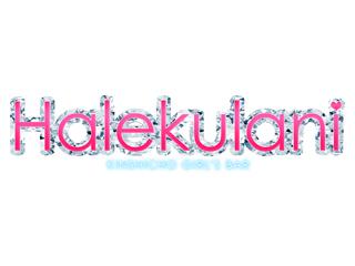 ガールズバー Halekulani〜ハレクラニ〜のアルバイト情報