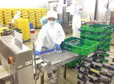 株式会社ミツハシ 港北工場のアルバイト情報