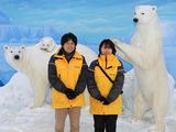 (株)文教スタヂオ ※円山動物園のアルバイト情報