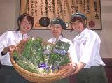 野の葡萄 ららぽーと横浜店のアルバイト情報