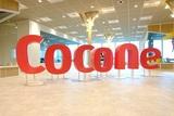 ココネ株式会社のアルバイト情報