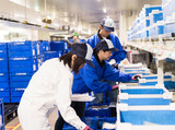 シモハナ物流株式会社 徳島第二営業所のアルバイト情報