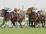 JRA 日本中央競馬会 札幌競馬場のアルバイト情報