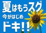 SGフィルダー株式会社 ※岩槻エリア/t104-2001のアルバイト情報