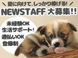 日研トータルソーシング株式会社 メディカルケア事業部 博多オフィスのアルバイト情報