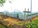 島農園のアルバイト情報