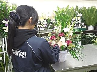 あいプラングループ (有)セレモサプライのアルバイト情報
