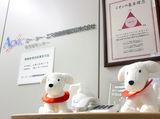 エー・シー・エス債権管理回収株式会社のアルバイト情報