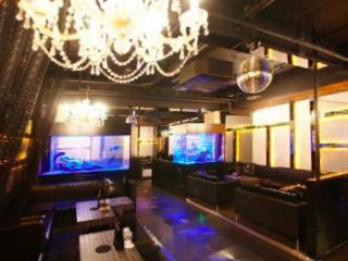 club Avalon (クラブ アヴァロン)のアルバイト情報
