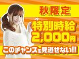 株式会社SANN 金沢文庫エリアのアルバイト情報