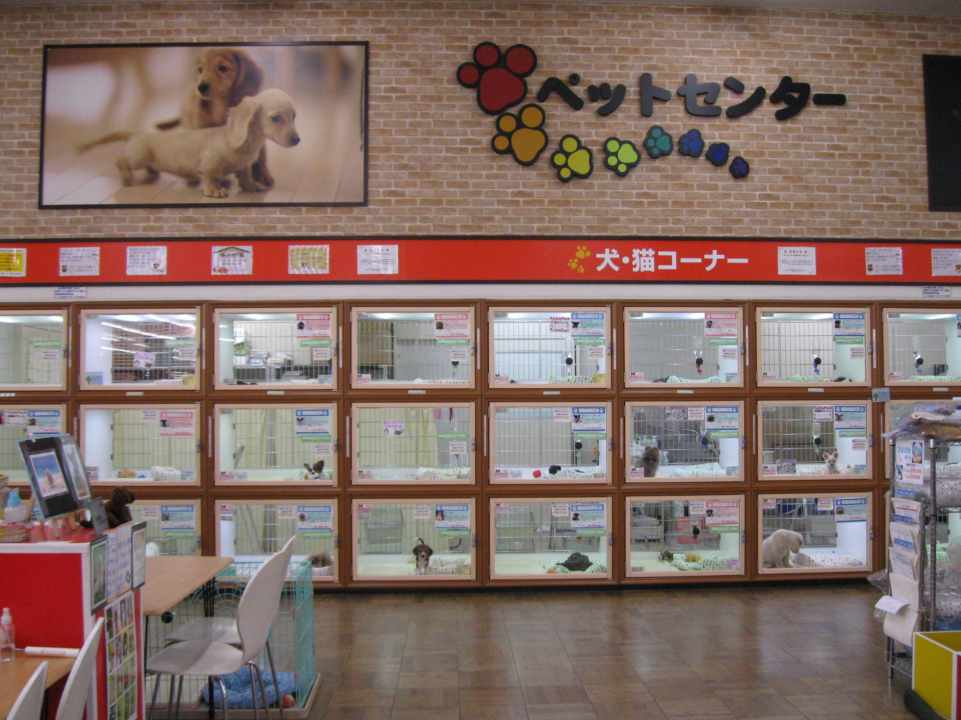 東京ワンク豊洲店 のアルバイト情報