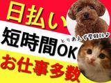 株式会社DELTA 熊本支店 のアルバイト情報
