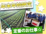 加藤農園のアルバイト情報