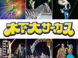 木下大サーカス 宮崎公演のアルバイト情報