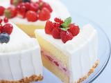 株式会社ミライナビ 勤務地:成田空港第一ターミナルの洋菓子店のアルバイト情報