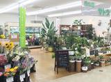 花の店サトウのアルバイト情報