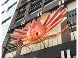 札幌かに本家 静岡駅前店のアルバイト情報