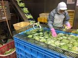 タイヘイ株式会社フレッシュデリカ事業部 名古屋工場 のアルバイト情報
