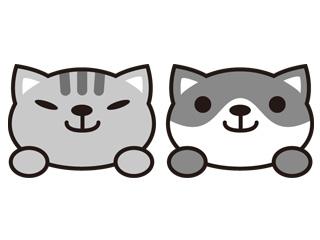ペットショップAZ(アズ)富士河口湖店のアルバイト情報