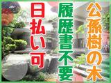 公孫樹の木のアルバイト情報