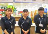 ボーネルンドあそびのせかい グランツリー武蔵小杉店のアルバイト情報
