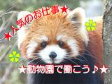 株式会社 ノトス アクアテラスギフトショップ ※よこはま動物園ズーラシア内のアルバイト情報