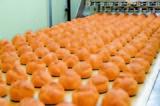 プライムデリカ株式会社 宮崎工場のアルバイト情報