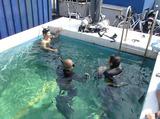 アジア海洋株式会社 ※勤務地:京葉ベース(潜水技術センター)のアルバイト情報
