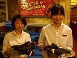 レッドロブスター 新松戸店のアルバイト情報