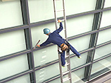 株式会社建美のアルバイト情報