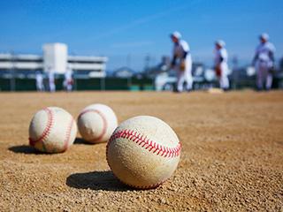 ステップ・ケー・スポーツのアルバイト情報