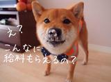 株式会社ログロール 太宰府支店 ※筑紫野エリアのアルバイト情報