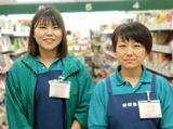 新鮮市場 鶴見店のアルバイト情報