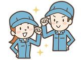 株式会社シェーナのアルバイト情報